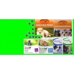 Środki na odrobaczanie dla psów i kotów.