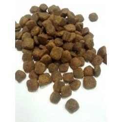 BRIT CARE - Hypoalergiczna karma sucha dla wrażliwych psów, zawierająca łososia.