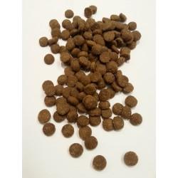Arion - ŁOSOŚ Z RYŻEM-  karma sucha dla małych dorosłych psów.