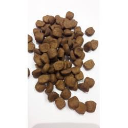 Royal Canin- BRITISH- karma sucha dla dorosłych kotów- brytyjczyków krótkowłosych.