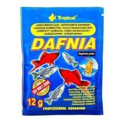 DAFNIA - rozwielitka suszona dla ryb. 12g. Dla wszystkich ryb ozdobnych.