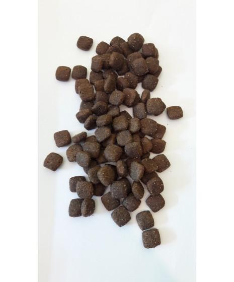 BRIT Premium jagnięcina- karma sucha dla psa.