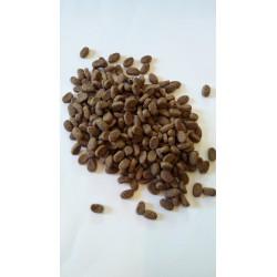 Purina PRO PLAN- - karma sucha z łososiem dla szczeniąt o wrażliwej skórze.