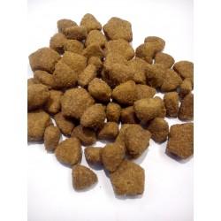 Purina- pełnoporcjowa karma dla dorosłych psów z jagnięciną.