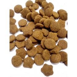 Purina- pełnoporcjowa karma dla  psów juniorów dużej rasy z indykiem.
