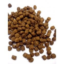Bosch MINI ADULT LAMB&RICE - karma dla dorosłych psów małej rasy. Z jagnięciną.