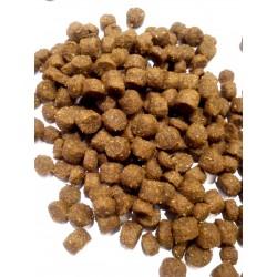 Arion MAINTENANCE SMALL BREED - karma dla dorosłych psów małych ras. Wysoka strawność i smakowitość.