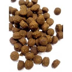 Arion  LAMB&RICE - karma dla dorosłych psów na bazie jagnięicny. Przeciwalergiczna. Bezglutenowa.