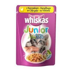 Saszetka dla kociąt i młodych kotów WHISKAS 100g z kurczakiem - mokra karma w galaretce.