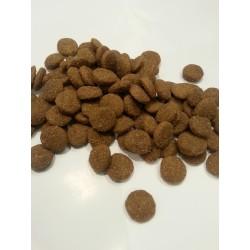 Disugual - karma z JAGNIĘCINĄ  dla dorosłych psów średnich ras. Monobiałkowa. Bardzo zdrowa. Chętnie jedzona przez pieski.