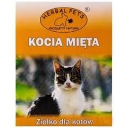 Kocia miętka. Ziółko dla kotów. Naturalny produkt zachęcający koty do zabawy.
