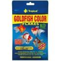 GOLDFISH COLOR- wysokowybarwiający pokarm dla wszystkich odmian złotych rybek oraz młodych karpi koi.12g.