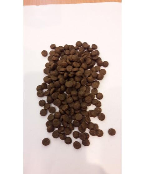 Josera CARISMO - karma sucha dla kota z niewydolnością nerek oraz dla kotów starszych.