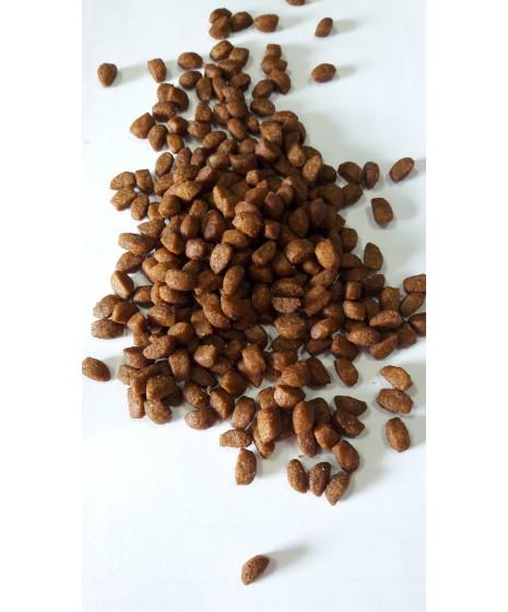 CLUB 4 ŁAPY - karma sucha PREMIUM dla kota. Wrażliwy przewód pokarmowy. Digestive sensitive.