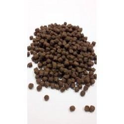 Acana karma sucha dla psa z jagnięciną i wołowiną.