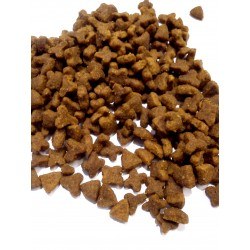 Royal Canin - SENSIBLE  dla dorosłych kotów z wrażliwym przewodem pokarmowym. Chętnie jedzona przez wybredne koty.