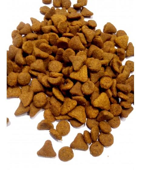 Royal Canin - EXIGENT dla kotów wybrednych, o słabym apetycie.