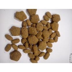 Purina DOG CHOW SENSITIVE - pełnoporcjowa karma dla dorosłych psów z łososiem. Dla psów z wrażliwym przewodem pokarmowym.