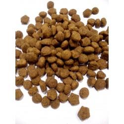 Purina- pełnoporcjowa karma dla  psów juniorów  z jagnięciną.