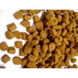 Purina PRO PLAN DELICATE - karma sucha dla kotów dorosłych wrażliwych oraz wybrednych. Z indykiem.