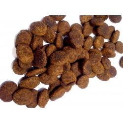Josera FESTIVAL - karma dla dorosłych psów z łososiem, kaczką, ryżem i pysznym sosem.