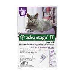 BAYER ADVANTAGE - krople przeciwpchelne dla kotów o masie ciała powyżej 4kg. Roztwór do nakrapiania.
